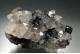 Specularite (Var. of hematite) & Quartz