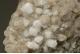 Harmotome & Calcite