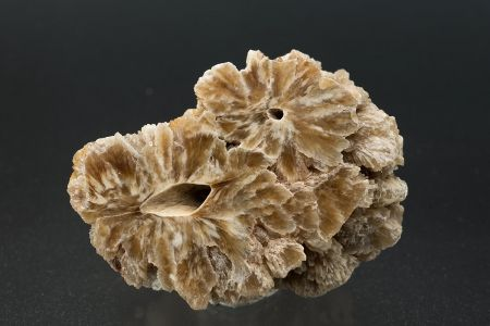 Barite stalagmite cross-section